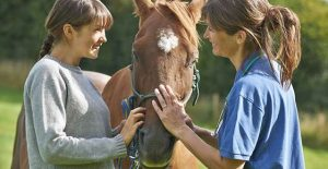 Image for Horse Health Article
