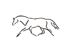 Virginia Equine Imaging - In the Plains, Virginia